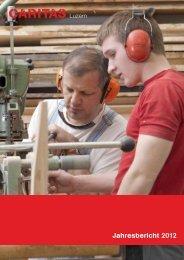 Jahresbericht 2012 - Caritas Luzern