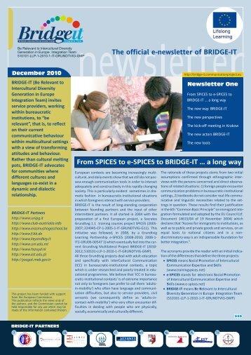 Newsletter 01 - Bridge-it - communicationproject.eu