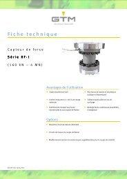 Fiche technique Serie RF-I - GTM GmbH