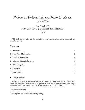 Plectranthus barbatus - AaronsWorld.com