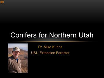 Conifers for Northern Utah - Forestry - Utah State University