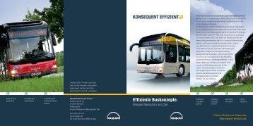 Effiziente Buskonzepte (926 KB PDF) - Transport efficiency