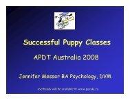 Successful Puppy Classes - Pavski