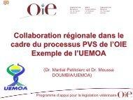 Collaboration régionale dans le cadre du processus ... - OIE Africa