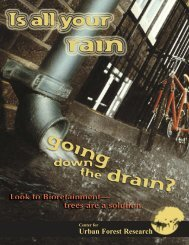 Is All Your Rain Going Down the Drain? - USDA Forest Service