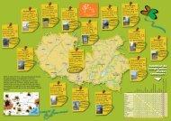 Mise en page 1 - Communauté de Communes du Réalmontais ...