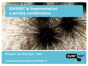 DNSSEC & fragmentation a prickly combination - Toronto