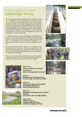 Umweltmagazin Saar Umweltmagazin Saar ... - Lebendige Prims - Seite 3