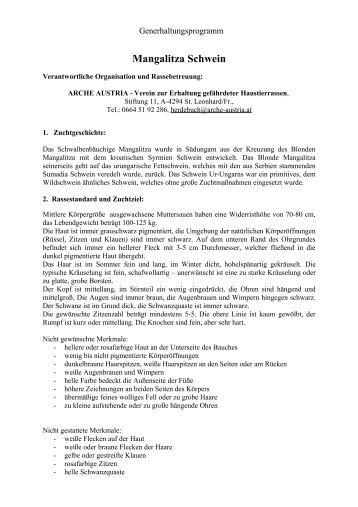 Mangalitza Schwein - Arche Austria