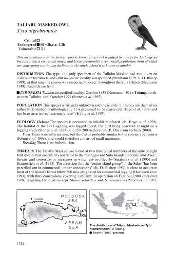 Lophura hatinhensis - BirdBase - photo#19