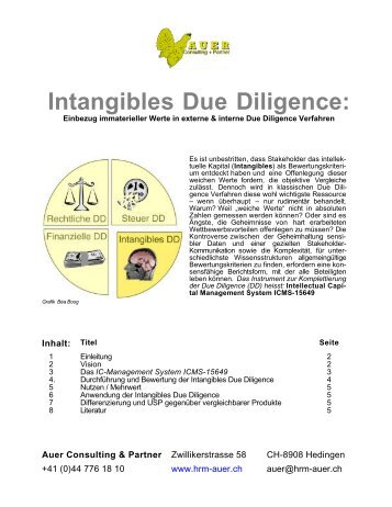 Intangibles Due Diligence - Auer Consulting & Partner