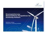 Stromspeicherung - Wirtschaftliche Perspektiven für Schleswig ...