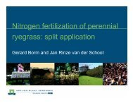 Nitrogen fertilization of perennial ryegrass: split application