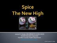 Spice - Hamilton County, Indiana