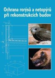 Ochrana rorýsů a netopýrů při rekonstrukcích budov - Česká ...