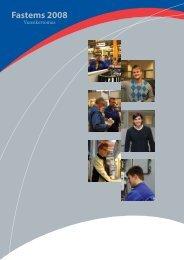 Vuosikertomus 2008 - Fastems