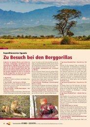 Zu Besuch bei den Berggorillas