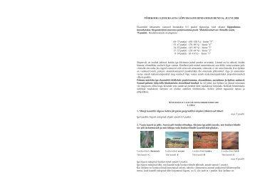 Hindamisjuhend 2008 - Riiklik Eksami ja Kvalifikatsioonikeskus