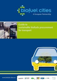 Guide to sustainable biofuels procurement for transport - Biofuel Cities
