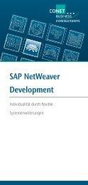 SAP NetWeaver Development