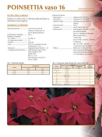 PDF (Poinsettia - parte 3)