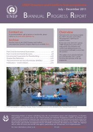 BIANNUAL PROGRESS REPORT - Disasters and Conflicts - UNEP