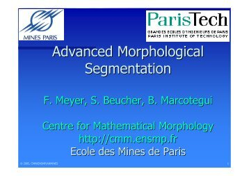 Advanced Morphological Segmentation