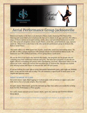 Aerial Performance Group Jacksonville