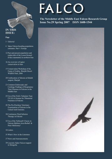 Issue No.29 Spring 2007 ISSN 1608-1544 - International Wildlife ...