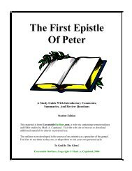 The First Epistle Of Peter - Executable Outlines
