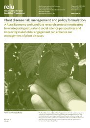 Plant disease risk, management and policy formulation