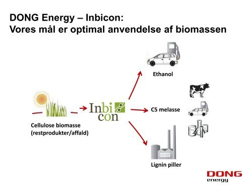 DONG Energy Power New Bio Solutions - Bioenergi