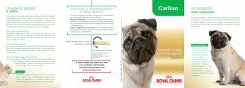 Carlino - Breed Nutrition - Royal Canin