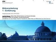 pdf-file - IGP - ETH Zürich