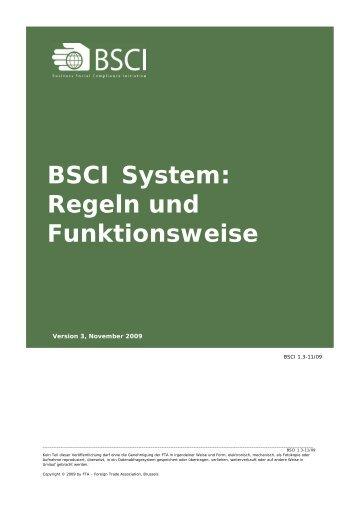 BSCI System: Regeln und Funktionsweise