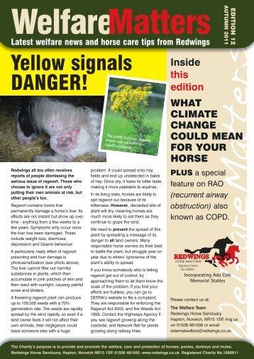Welfare Matters Edition 12:Spring Newsletter 2010 - Redwings