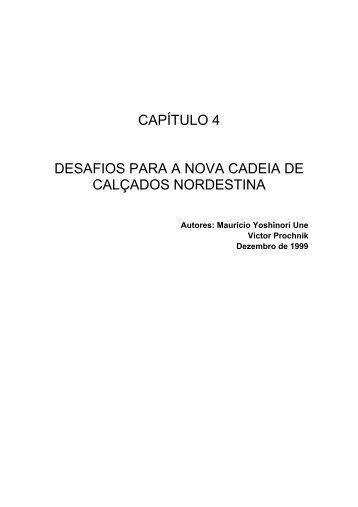 Desafios para a Nova Cadeia de Calçados Nordestinos - Instituto de ...