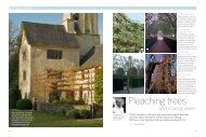 Pleaching trees - Arne Maynard Garden Design
