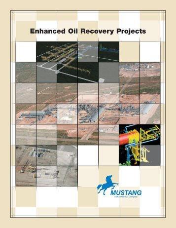 Enhanced Oil Recovery Projects - Mustang Engineering Inc.