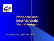 Nationale und internationale Vernetzungen - CEBS