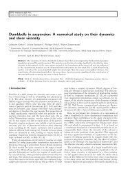 Download - Theoretische Physik I - Universität Bayreuth