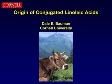 Origin of Conjugated Linoleic Acids - Office of Dietary Supplements