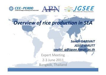 an overview of rice Rice starch market report overview: - this report studies the rice starch market status and outlook of global, from angles of players, regions, product types and end.