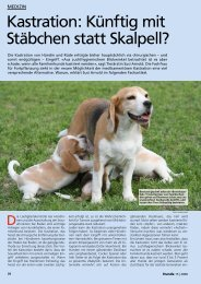 Kastration: Künftig mit Stäbchen statt Skalpell? - Animalreproduction