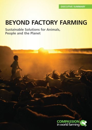 Beyond Factory Farming - Summary - Compassion in World Farming