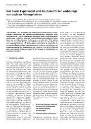 Das Swiss Experiment und die Zukunft der Vorhersage von alpinen ...