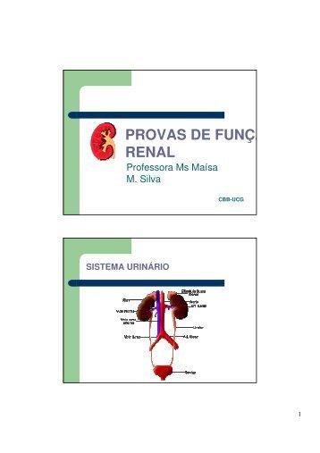 Prova Funcao Renal.pdf - Ucg