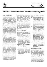 Traffic – Internationales Artenschutzprogramm