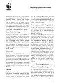 Östlicher Gorilla (Gorilla beringei) - Page 2