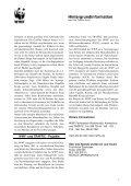 Östlicher Gorilla (Gorilla beringei) - Page 3